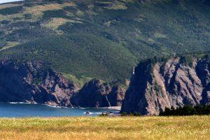 Michael Snow: Newfoundlandings